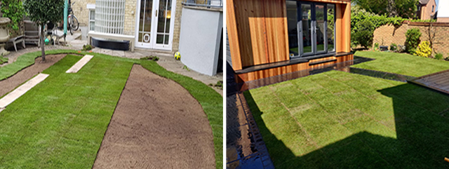 Lawn turfing - Cambridge turf layers
